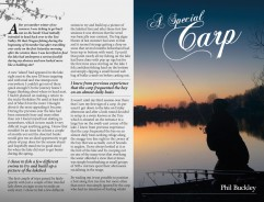 A Special Carp - Phil Buckley
