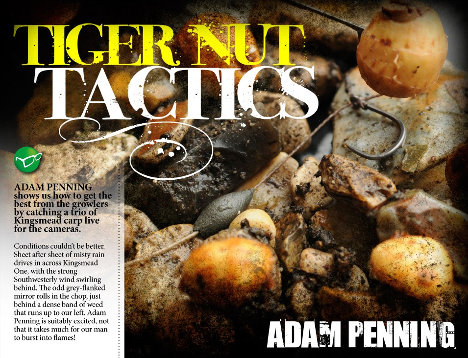 Tiger Tactics - Adam Penning
