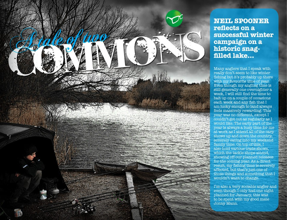 A Not-So-Common Winter - Neil Spooner