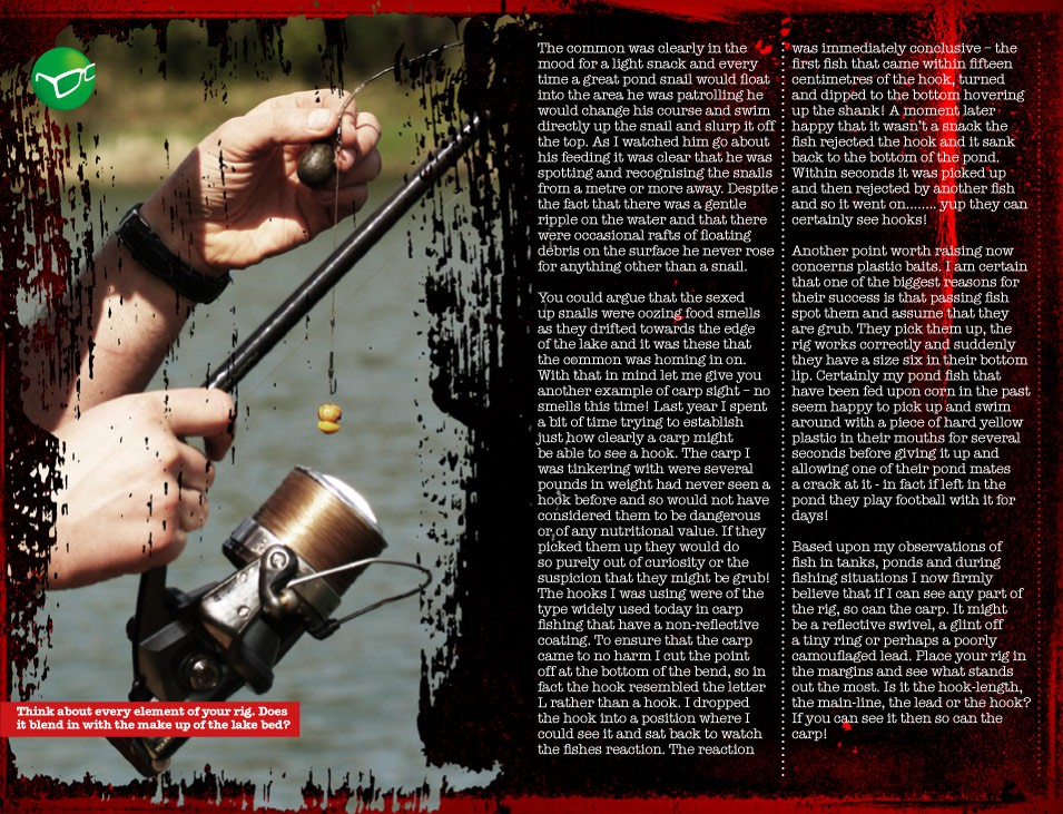 What Can Carp See? - Simon Scott