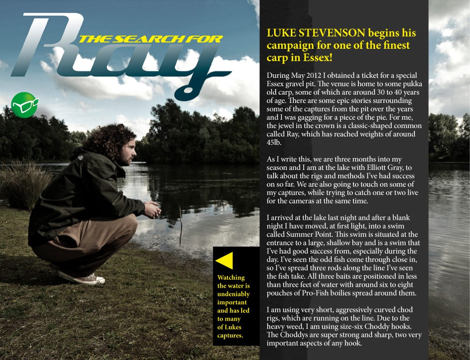 The Search For Ray - Luke Stevenson