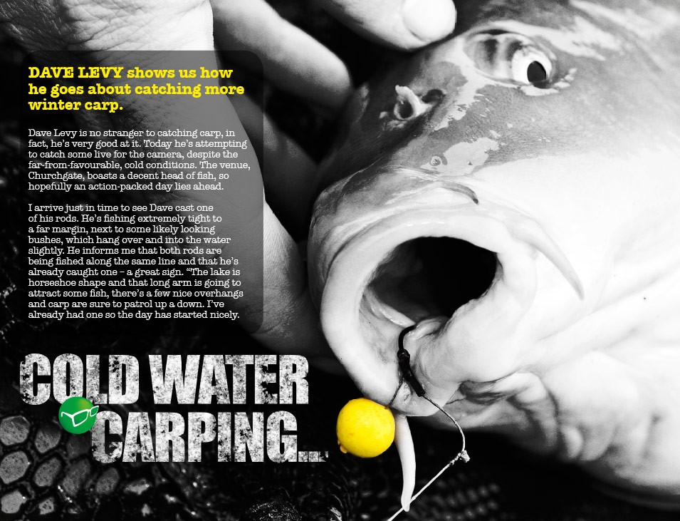 Cold-Water Carping - Dave Levy