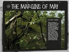 The Margins of May - Elliott Gray