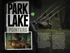 Jack Reid's Park Lake Pointers