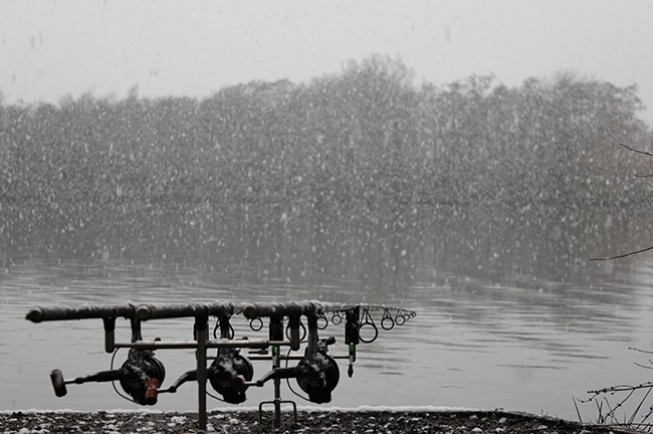 Catching a carp in the snow