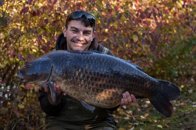 A stunning old 35lb 8oz common