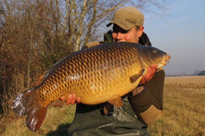 This 37lb common came in less than ideal conditions