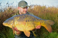 A pretty fully-scaled mirror of 16lb