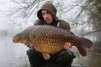 Stunning fully scaled mirror