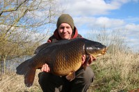 Old, dark 28lb 8oz common