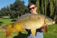 A stunning South African common