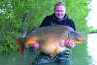 The other side of Gigantica's biggest resident