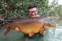 New Marker Leads ultra effective at Gigantica