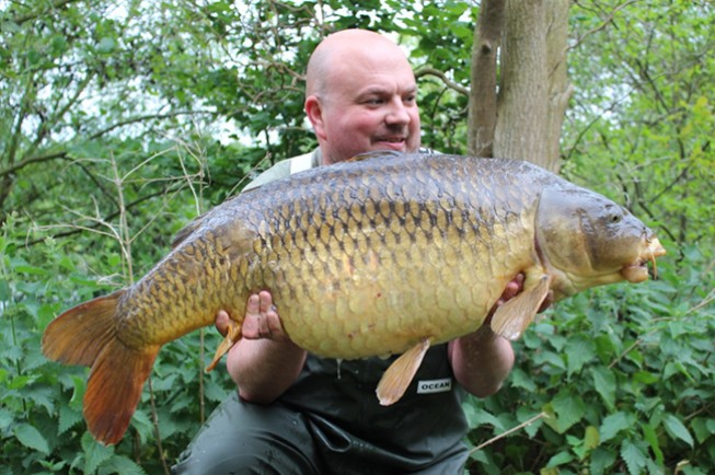 The Scarred Common at 41lb