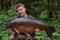 Carp don't come much better looking than this