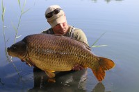 The awesome Bream Common at 37lb 6oz