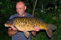 Not a monster but carp don't come much better looking