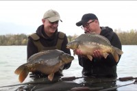 Here they are! The future of Gigantica