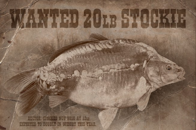 Gigantica's most wanted