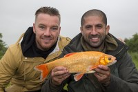 Ali and Jamie got amongst some cracking golden orfe