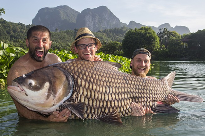 Thailand is home to the biggest carp species in the world