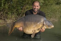 It's called Monster Carp because of creatures like this!