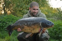 Carp don't come much better looking