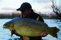 Thinking Tackle Danny common
