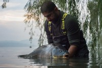 This certainly wasn't one of the biggest fish in Viverone