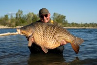 TT OD 3 - Big Common for Danny F