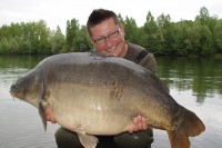 Over 50lb of monster mirror carp