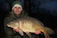A beautiful scaly mirror taken in a winter downpour