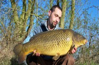 The other side of the scale perfect common