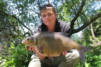 Bream are like marmite