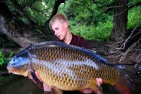 This perfectly scaled common fell to a home-made boilie