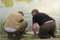 Neil and Joe Atkinson carefully lower the fish back