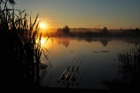 """A proper carpy morning,"" in James' own words"
