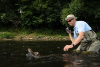 Dean gets among the Wye fish