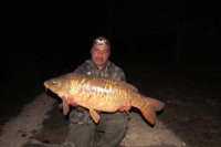 There have been a few scaly crackers out this month