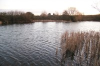 Winter is a bleak time to be angling
