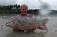 These giants are the fish that drew Ali and Tom to Thailand
