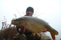 This 19lb common came after Mark moved areas