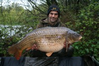 Bubble Tail was a new PB common for Picky