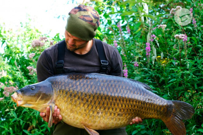 Here she is guys, the Burghfield Common at 55lb 4oz