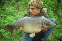Another awesome carp from the dawn of the fishmeal era
