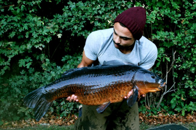 Indescribable colours - The Strawberry Common at 32lb 12oz