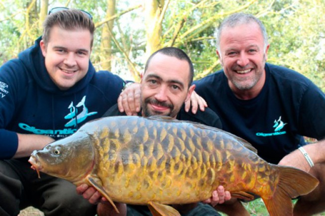 We're looking for a new Gigantica bailiff