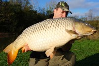 This 47.74lb common carp was caught by