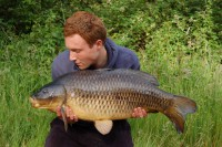 This common came from Yateley Car Park Lake