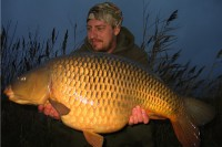 This cracking common was a rare visitor to the bank